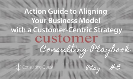 Consulting Playbook: Challenges in Implementing a New Business Model