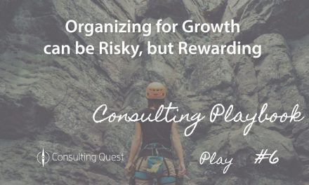 Consulting Playbook: Organize for Growth – a Winning Strategy for Survival