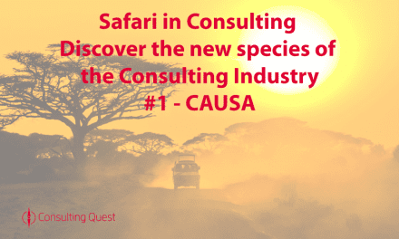 Safari in Consulting #1: CAUSA Consulting