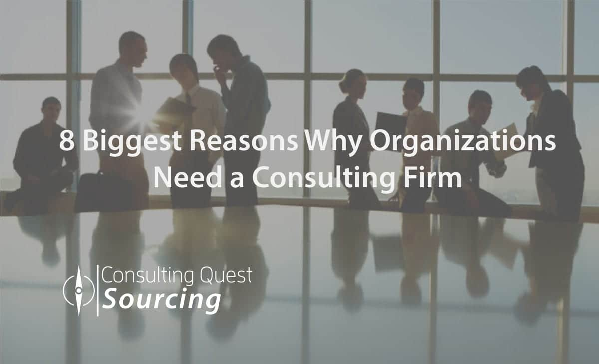 8 Biggest Reasons Why Organizations Need a Consulting Firm and How Consultants Cater to Clients' Needs