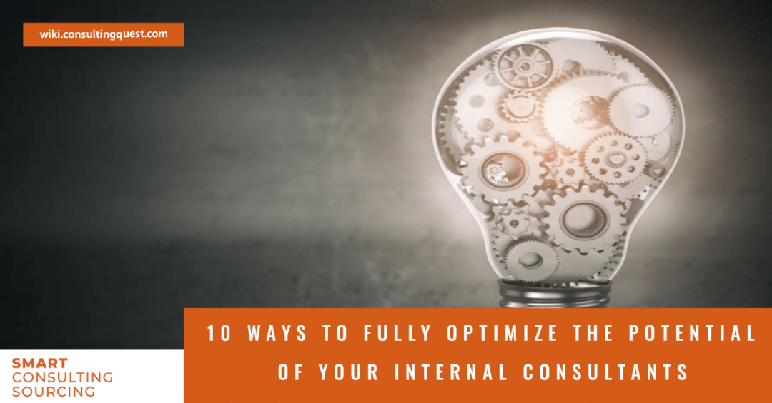 10 Ways to Fully Optimize the Potential of Your Internal Consultants